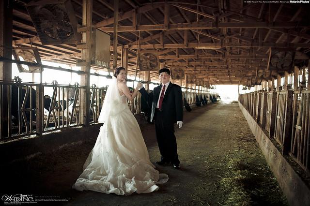 peach-2013-3-7-wedding-3169