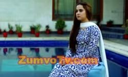 Rishta Anjana Sa Episode 83 Full by Ary Digital Aired on 29th November 2016