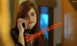 Meri Saheli Meri Bhabhi Episode 100 Full by Geo Tv Aired on 25th November 2016