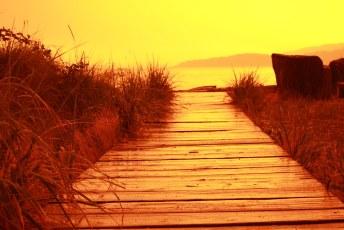 Dundarave Beach at Sunset #nofilter