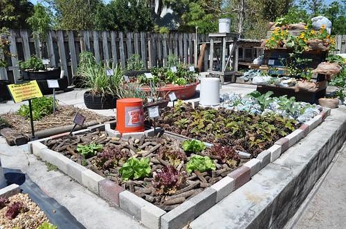 Urban Gardening, ECHO Farm, North Fort Myers, Fla., March 19, 2011