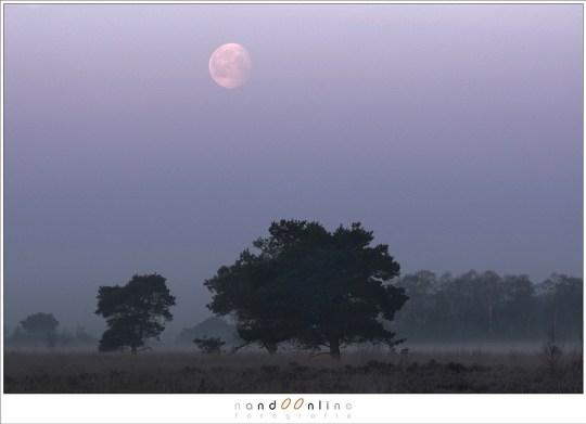 In de schemering is het perfect om de maan mooi op de foto te krijgen met het landschap erbij