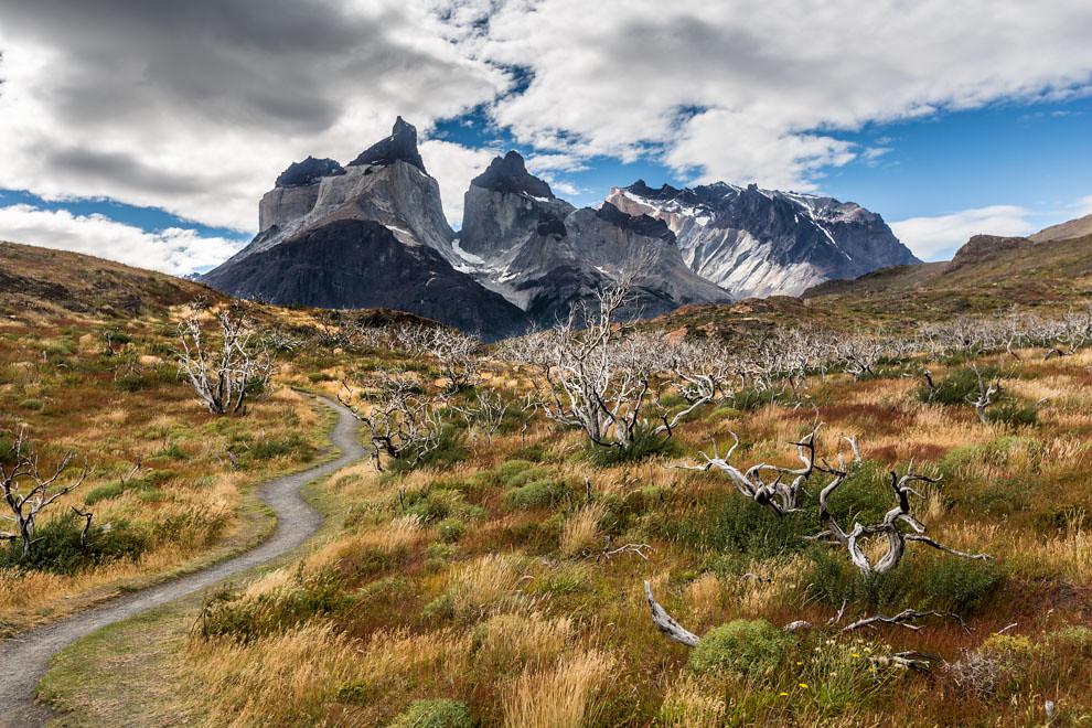 Un sendero conduce a los Cuernos del Paine, una de las alucinantes vistas que ofrece entre sus atractivos el Parque Nacional Torres del Paine, en Chile. (Tetsu Espósito).