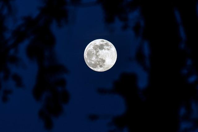 Super Moon 2013 por Jay Lee