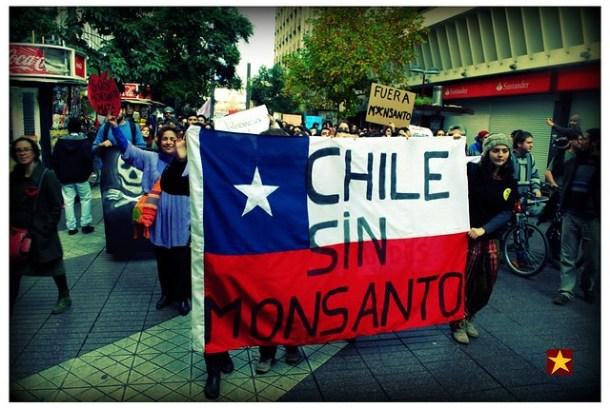 2013 05 25 Marcha contra transgenicos Monsanto 472 b