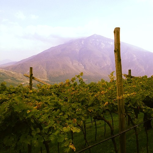 Trento. #ferrarisparkling