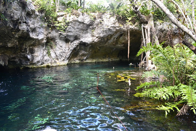 Cancun alternatives _ Swimming in Tulum's cenotes