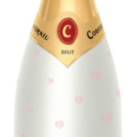 Win a Mixed Case of Codorníu Cava Limited Edition Bottles
