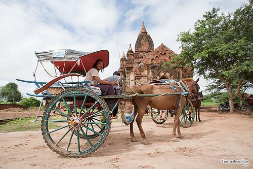 Carro caballos en Bagan (Myanmar)