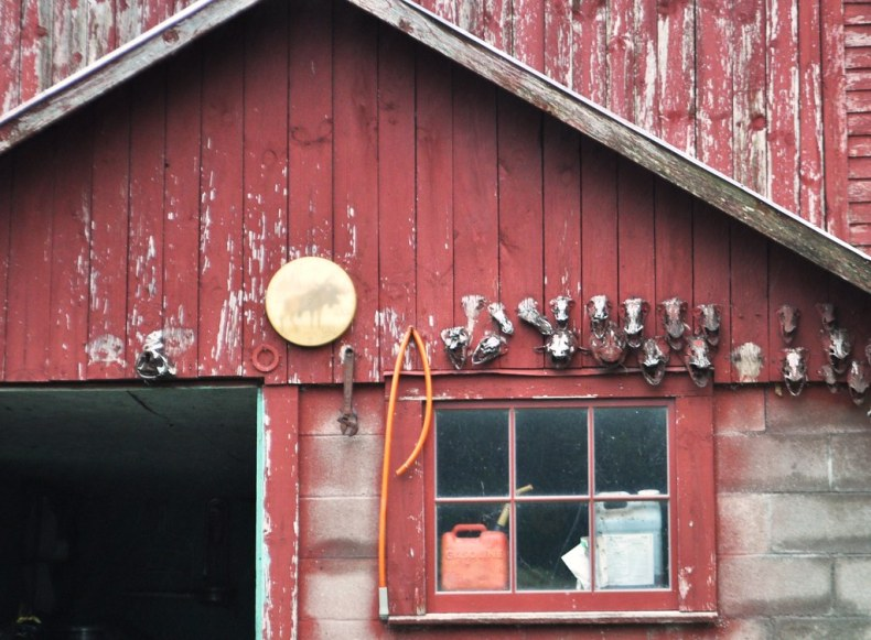 Fish Heads on an Amish Barn on New York's Amish Trail