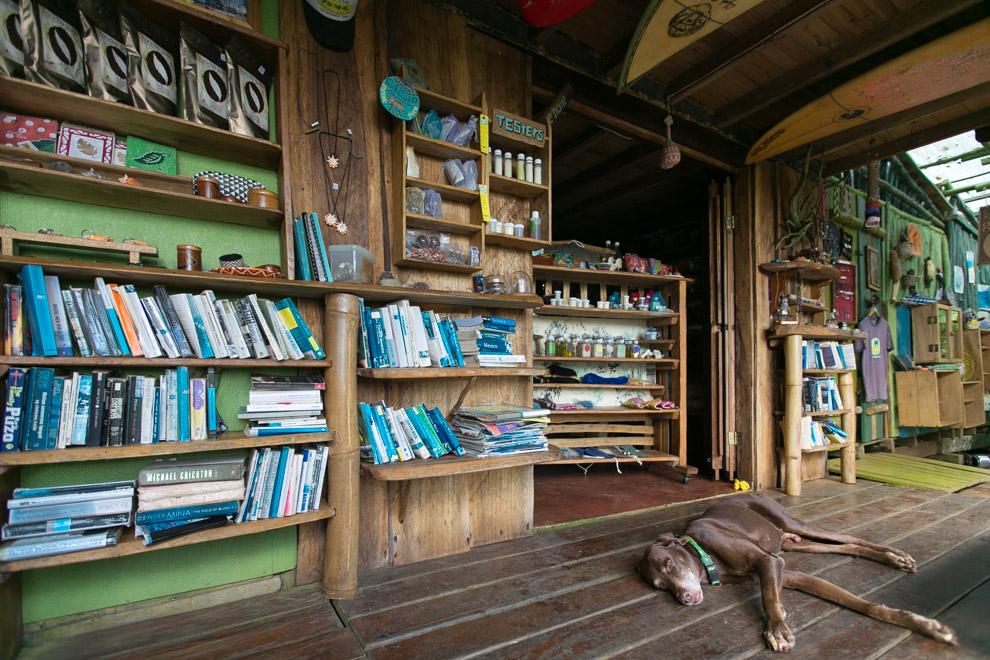En la cima de la Isla Bastimentos, se encuentra una cafetería con productos orgánicos donde se pueden pasar horas leyendo y apreciando el increíble paisaje. (Tetsu Espósito)
