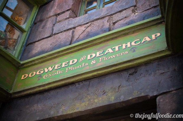 Harry Potter Dogweed and Deathcap