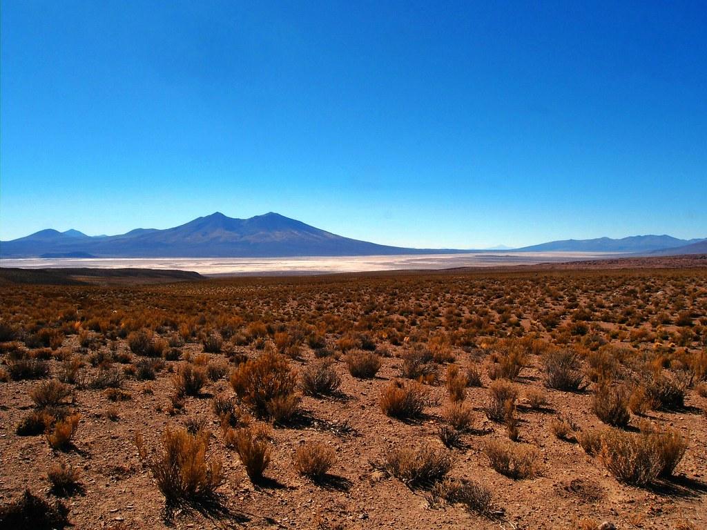 Salt Flat View