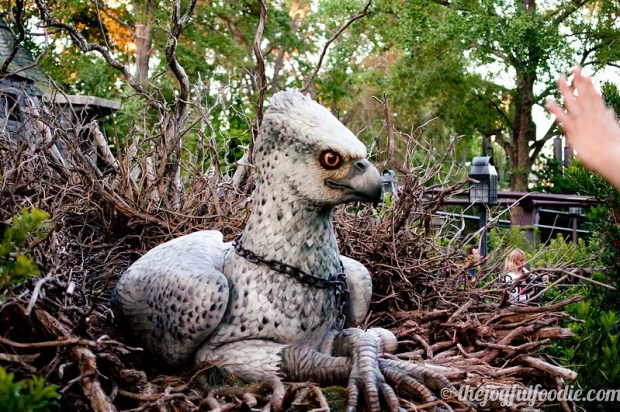Buckbeak aka Witherwings
