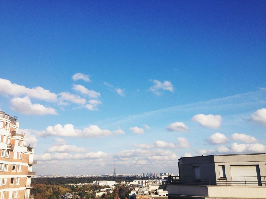photo 4 (1)