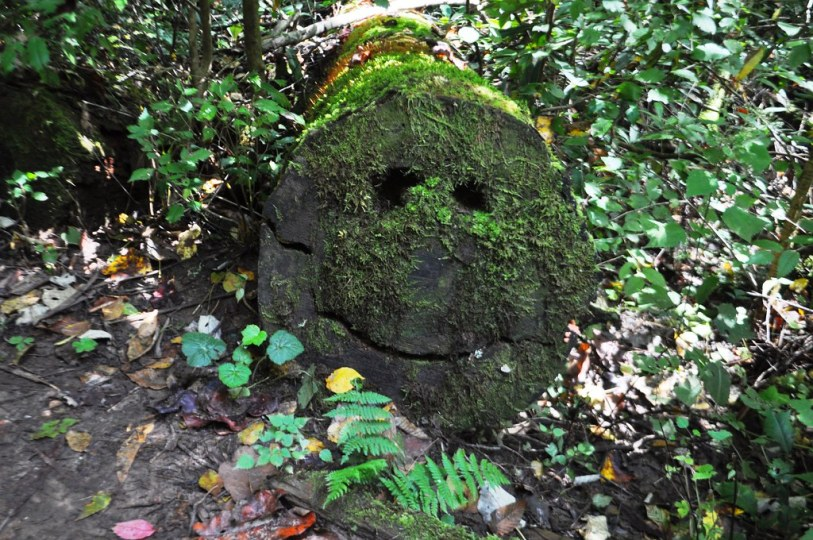 Be Happy in the North Carolina Mountains. Joyce Kilmer Memorial Forest, Oct. 9, 2014