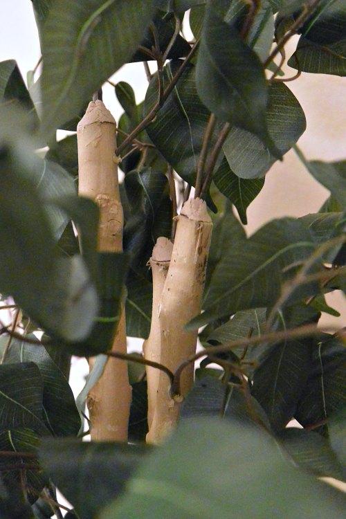Medium Of Silk Plants Direct