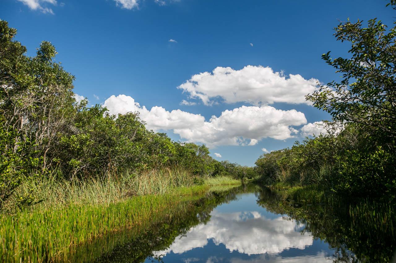 El Parque Nacional de los Everglades tiene una extensión de más de 6000 kilómetros cuadrados y alberga ciénagas, manglares y humedales. Everglades se traduce como ciénagas eternas. (Tetsu Espósito)