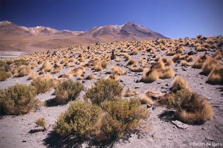 Cerro Cañapa, Bolívia.