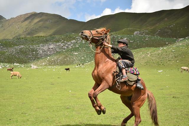 Arslanbob Walnut Forest - Kyrgyzstan 2015