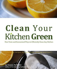 CYKG Book Cover of Clean Your Kitchen Green