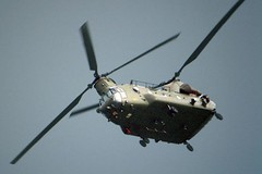 """Chinook • <a style=""""font-size:0.8em;"""" href=""""http://www.flickr.com/photos/59278968@N07/6325047237/"""" target=""""_blank"""">View on Flickr</a>"""