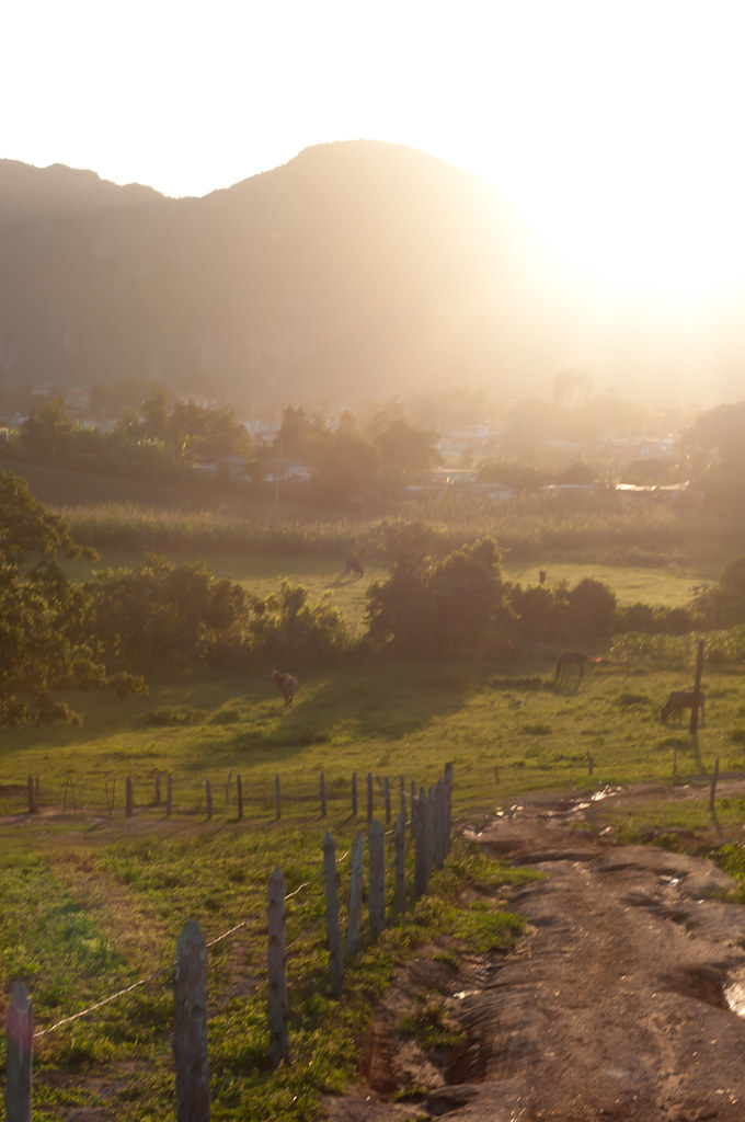 Golden hour in Vinales, Cuba, Countryside