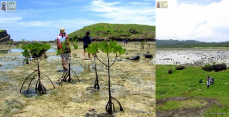 Walking through the Mangrove Highway (pathway to rockk formation without mangroves)