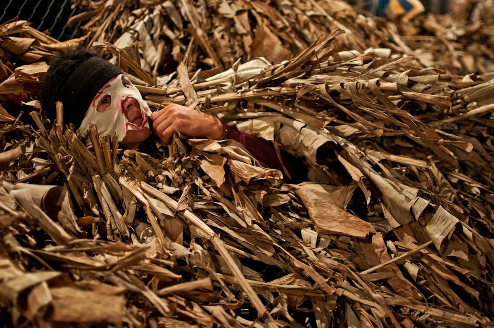 """Un muchacho disfrazado de Guaicurú se acuesta en el césped mientras espera su turno para correr y perseguir a las mujeres que participan del juego tradicional de la fiesta de San Pedro y San Pablo en el predio de una Capilla de la compañía Itaguazú de la Ciudad de Altos, Departamento de Cordillera. Lugar en donde se realiza el ritual de Kambá Ra´anga (imagen del negro) en el cual los protagonistas se visten con prendas hechas de hojas de banano, portan máscaras de madera y danzan al compás de la música de un grupo de nombre """"banda para´i"""" (de colores). Esta realización representa una ceremonia de iniciación, por ejemplo, el más conocido: el rapto perpetrado de alguna doncella por parte de un Guaicurú. (Elton Núñez)"""