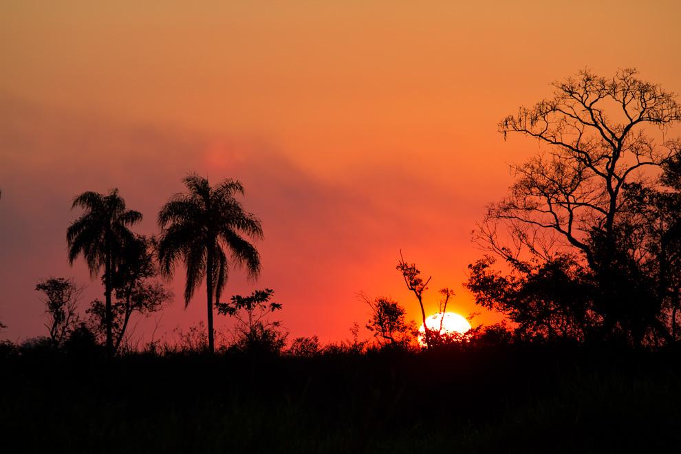 Los últimos minutos del sol en el horizonte se proyectan a través de un bosquecillo en un tranquilo atardecer en un pequeño pueblo de San Pedro. (Tetsu Espósito)