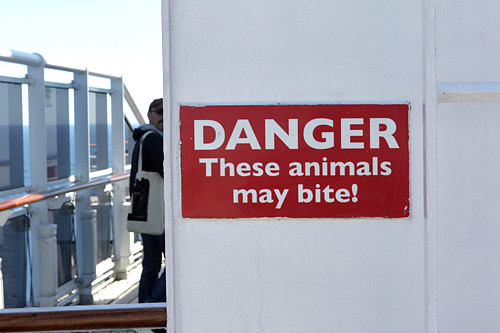 danger these animals may bite