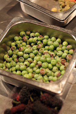 green berries