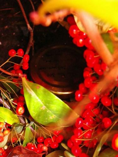 Jar No 301 in situ 01