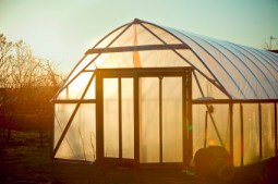 outdoor cedar greenhouse