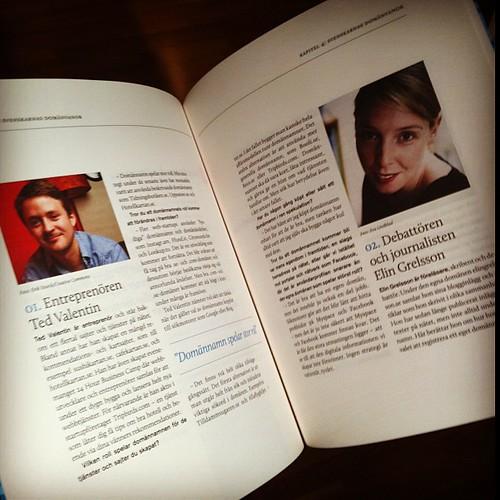 Rafflande innehåll i boken om domännamn, featuring @tedvalentin och @elingrelsson