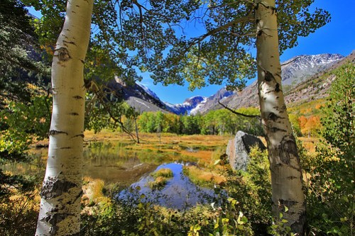 Fall in Upper Lundy Canyon