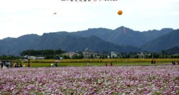 旅行︱台中新社.2011新社花海節 v.s 台中國際花毯節之花海區