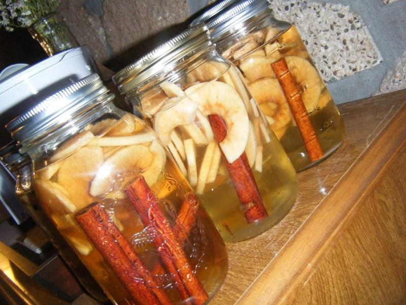Apple Cinnamon Vodka