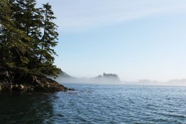 Morning mist, Tofino