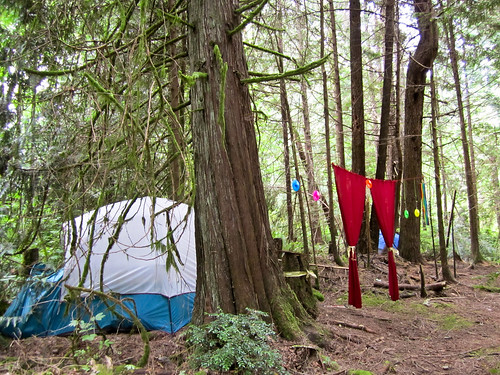 Jealous of Kate's amazing camp site