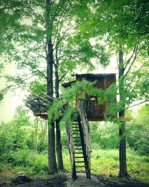Treehouse, Lake Spectacle, CT