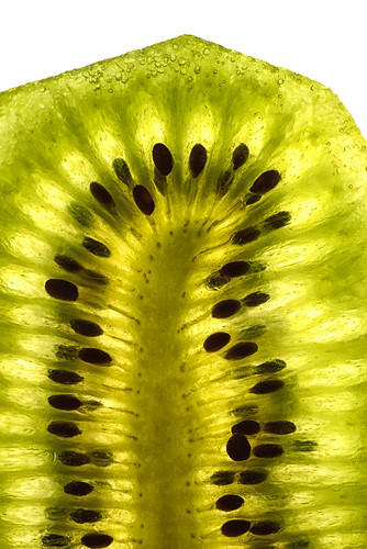 """kiwi • <a style=""""font-size:0.8em;"""" href=""""http://www.flickr.com/photos/22289452@N07/14071888036/"""" target=""""_blank"""">View on Flickr</a>"""