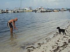 Diablo at the Beach 6
