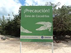 Lagoon Crocodile Sign