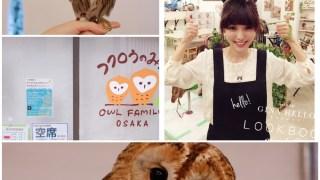 日本關西旅遊|2015春天。大阪也有 OWL Family 貓頭鷹咖啡