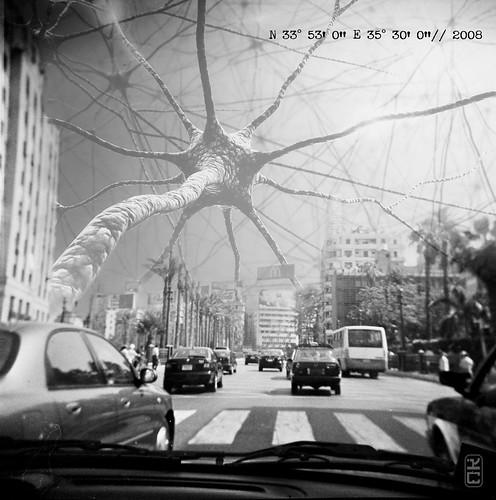 Monster / lebanon / 2008