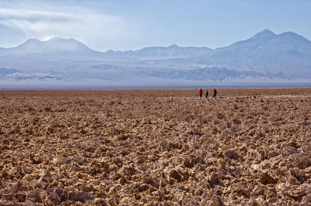La tierra resquebrajada por el sol se presenta como un paisaje extraterrestre en los salares chilenos del desierto de Atacama. (Roberto Dam)