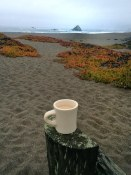 Morning tea overlooking Wright's Beach, Sonoma State Park, CA