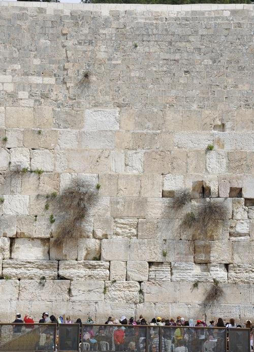 Ierusalim (1 of 1)-103