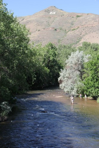 Fly fishing clear creek